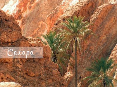 Экскурсия по Сахаре