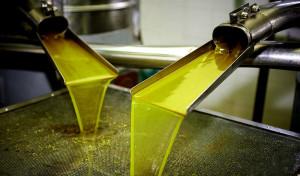 Как производят оливковое масло