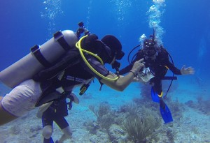 diving-